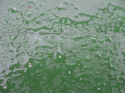 lietus,šlapias,lašelinė,vanduo,lietingas oras,lenta,sodo stalas,žalias,nuosėdos,sniegas,kruša,siaubingas,pavasaris,fonas