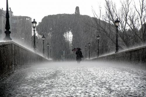 rain wet drops