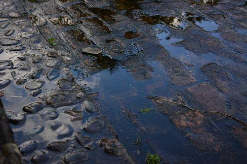 rain puddle brick