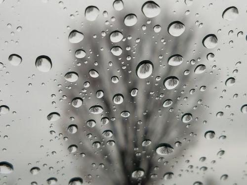 rain drop wet