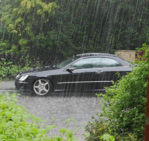 rain auto plant