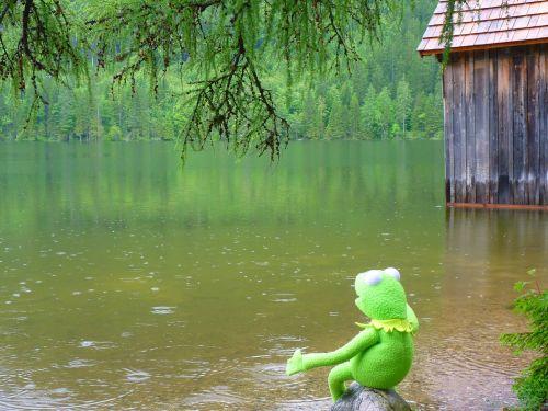 rain lake water