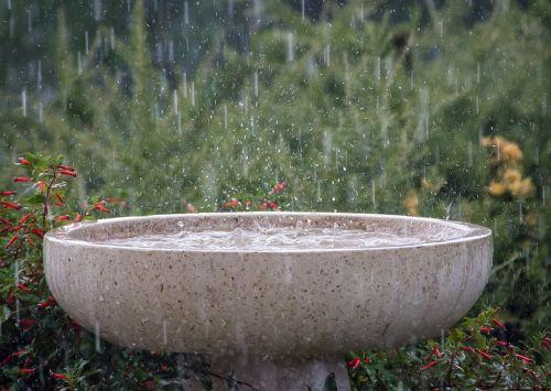 rain rainfall wet