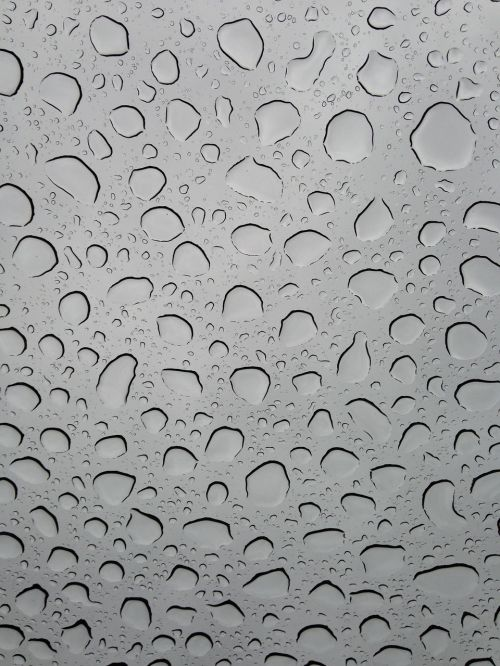 rain raindrops water