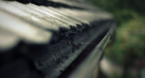 rain gutter gutter roof