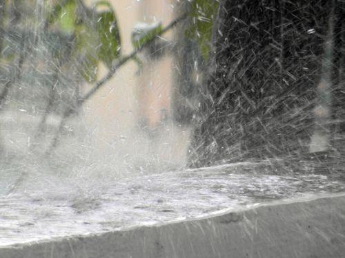 Rain Splash