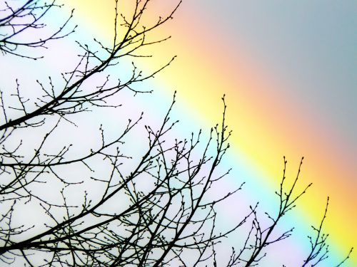 rainbow sky spectrum