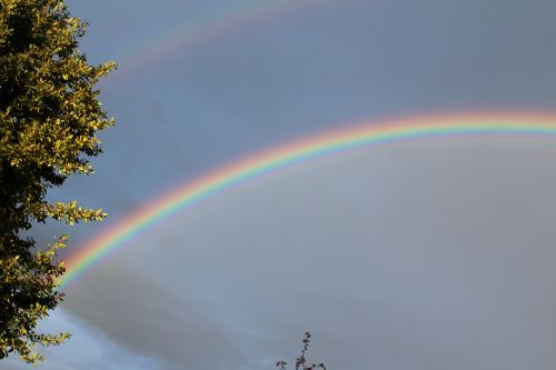rainbow,double,double rainbow,natural phenomenon,sky,natural spectacle,natural wonders,mood,refraction,rainbow colors,sunshine,thunderstorm,of course,nature,rain,arch,weather