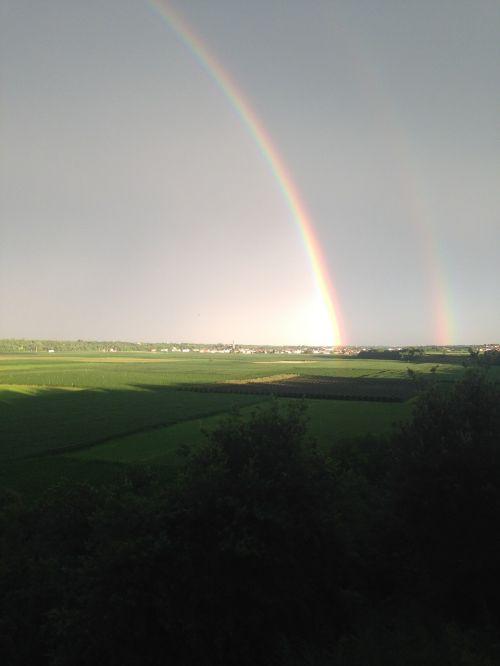 rainbow campaign gray