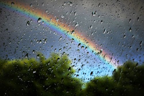 rainbow rain nature