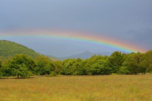 rainbow multicolor rain