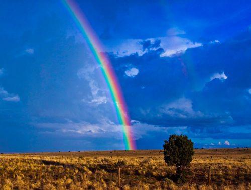 rainbow southwest desert