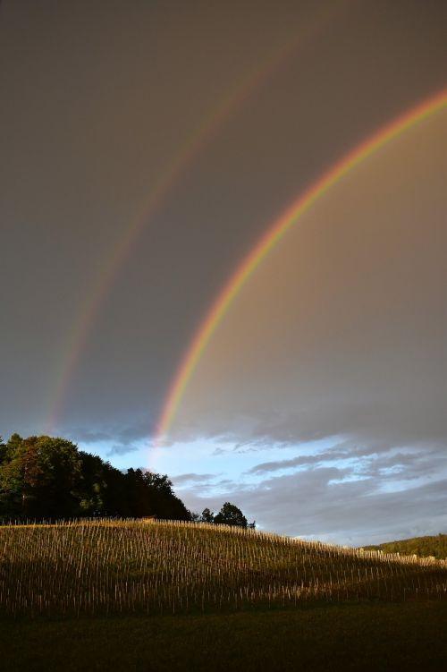 rainbow nature spectacle