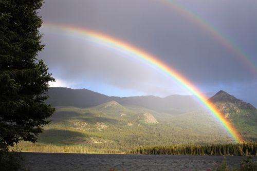 rainbow rain arch