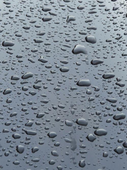 raindrop rain wet