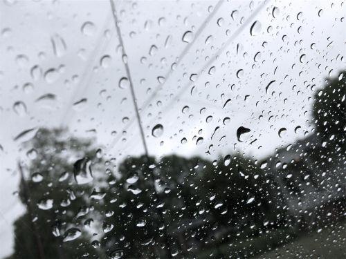 raining rain drops