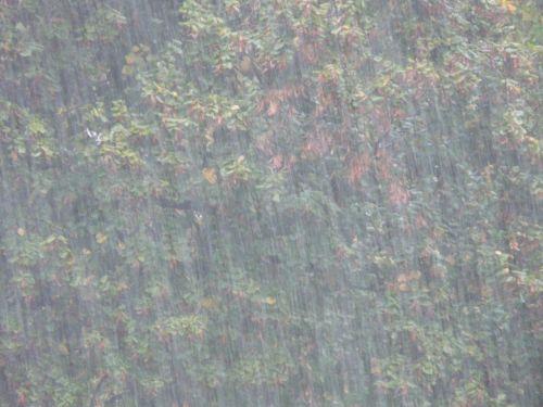 rainstorm downpour shiver