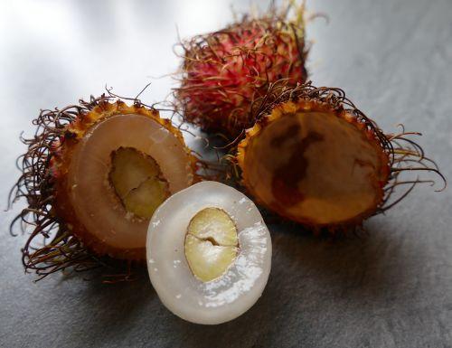 rambutan exotic fruits incorrect lychee