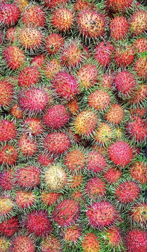 rambutan  fruit  marketplace