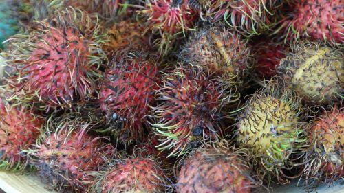 rambutan fruits fruit