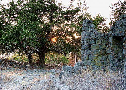 ramtaniya golan heights israel