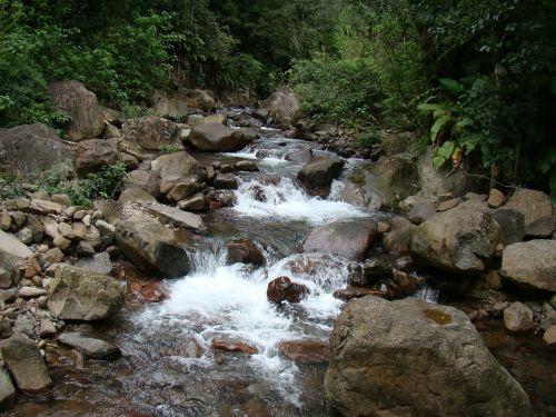 rapids rio nature