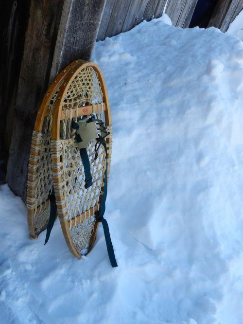Snowshoes # 2