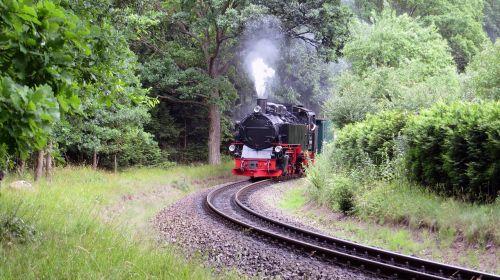 rasender roland railway narrow gauge railway