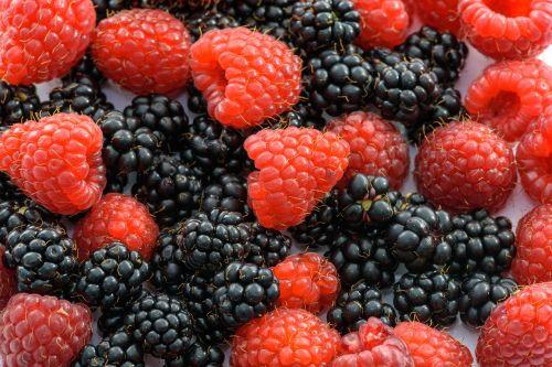 raspberries fruits of the forest blackberries