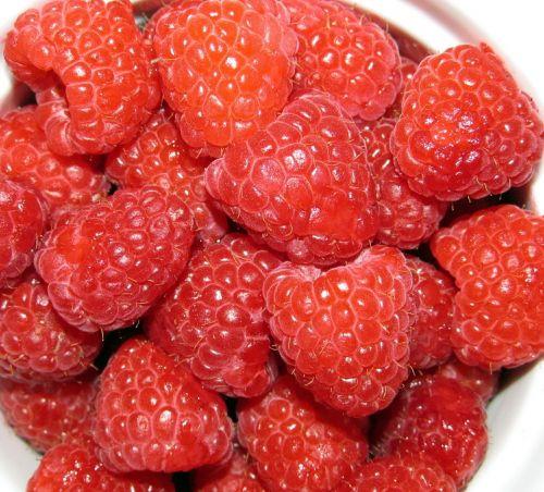 raspberries fruit berries