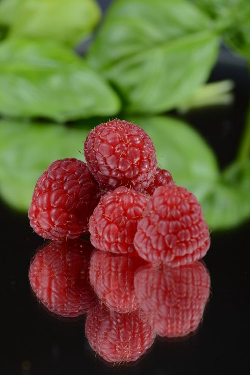 raspberry fruit mirror