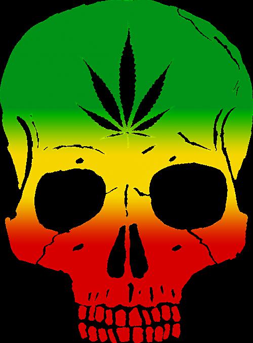 rasta skull cannabis