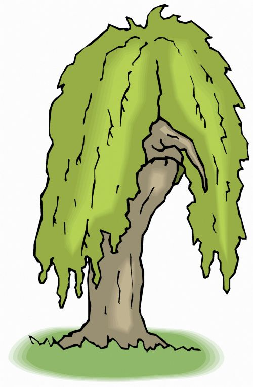 Rasta Tree 1