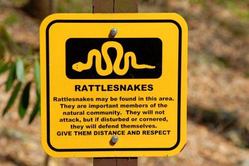 Rattle Snake Warning