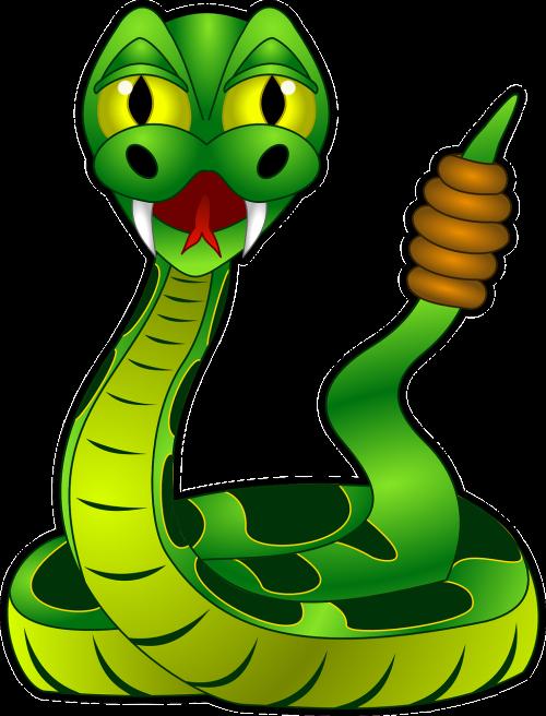 rattlesnake reptile snake