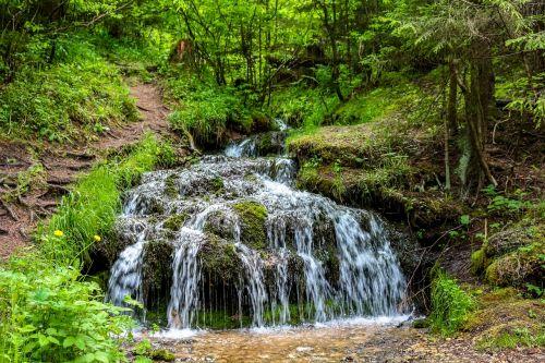 rattlesnake creek creek stream