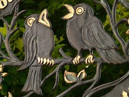 raven bird golden