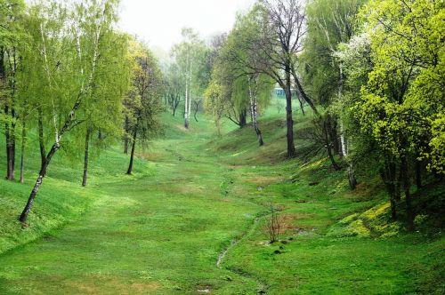 ravine green spring