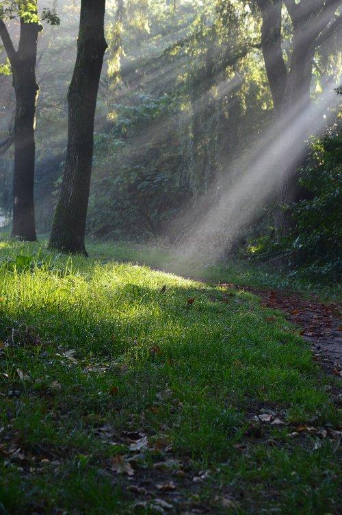 rays of sun  sun rays  sun