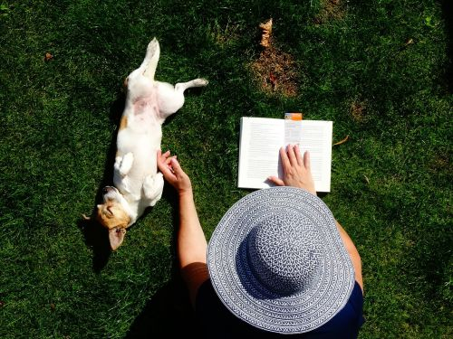 read doggy garden