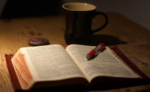 read mugs bible