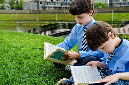 read  books  lawn