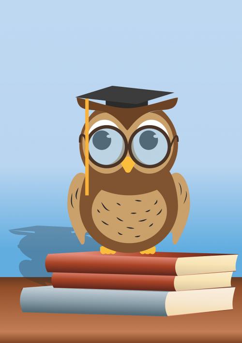read owl book owl