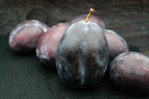 real plums plums large