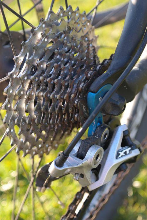 rear derailleur pinion gear mountain bike