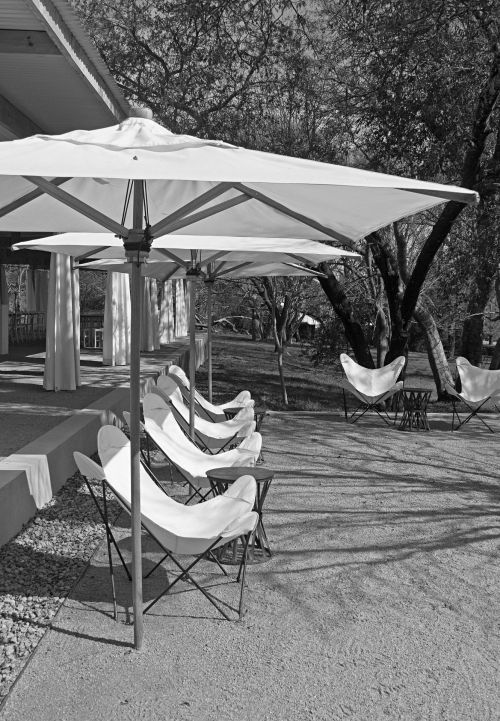 Recliners Under Parasols In B & W