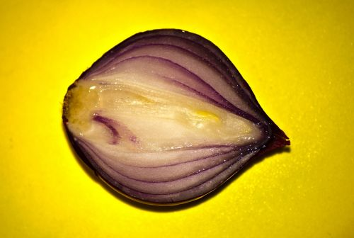 red onion vegetable cut