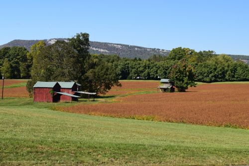 red barns clay