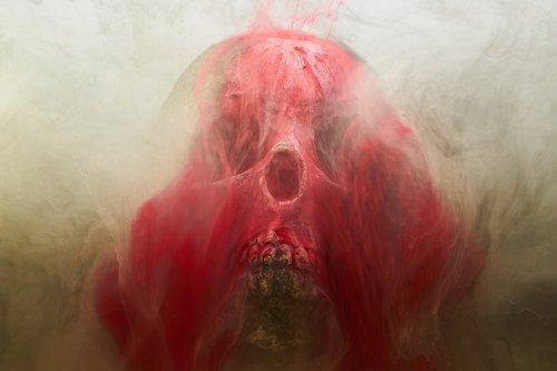 red  skull  dry head