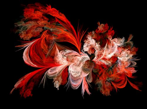 raudona, balta, fraktalas, abstraktus, raudonas ir baltas fraktalas
